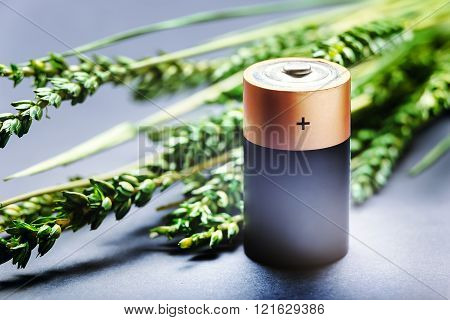 Heavy duty D type battery on a green branch background