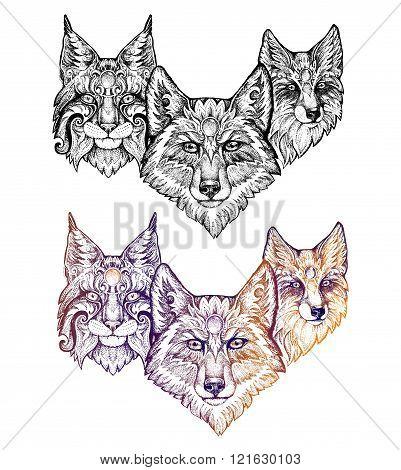 Tattoo. Wolf, Lynx, And Fox