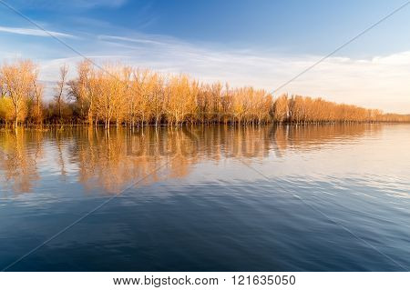 Autumn Trees Reflecting In The River