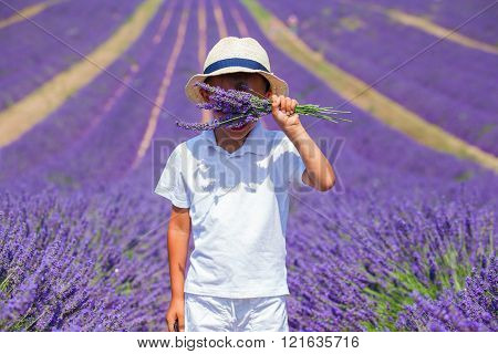 Cute boy in the lavander fields