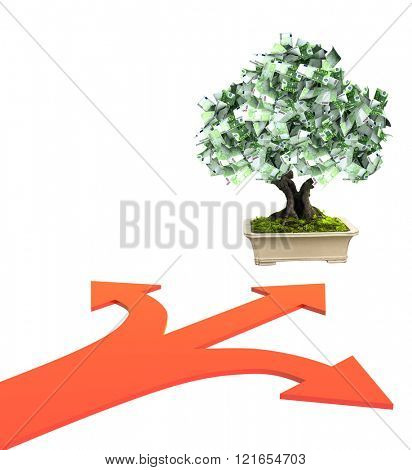 3d money tree euro banknotes and three bound arrows of red color, specifying different directions. Isolated on white background