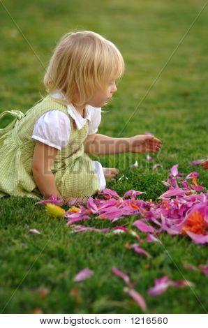 Child In Dalia Petals