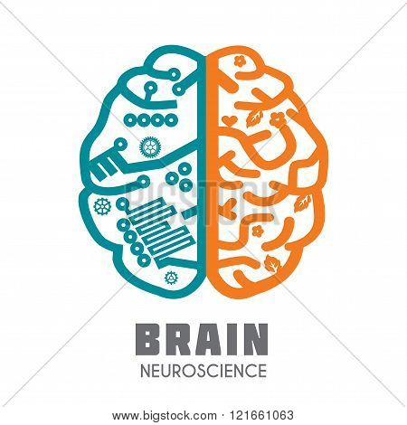 Human Brain vector icon
