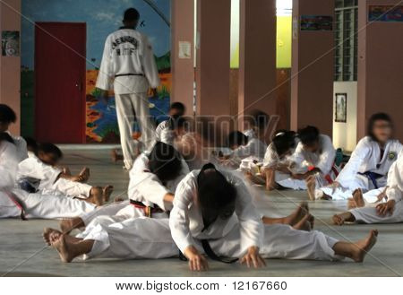 taekwondo students and master