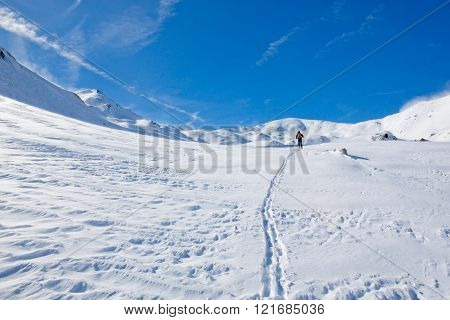Ski Print Of A Skier In A Valley