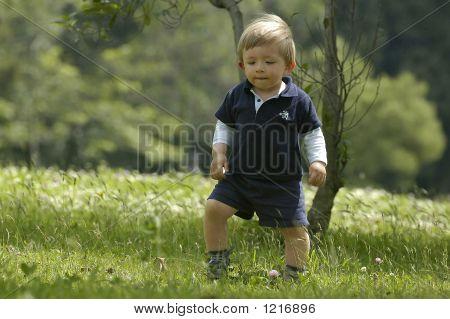 Baby Boys Excursion