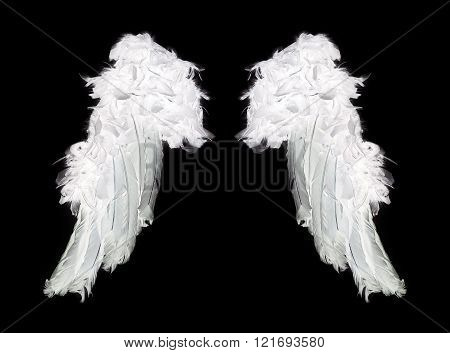 White angel wings isolated on black background.