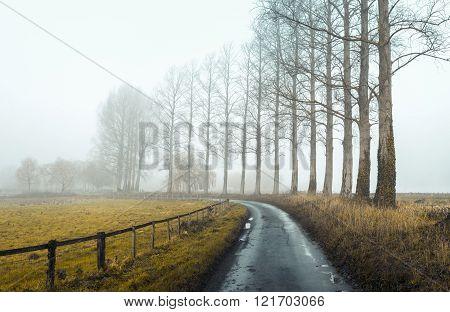 Misty Road 2