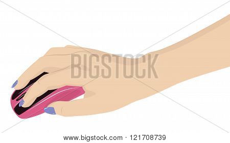 Female Hand Holding A Mouse