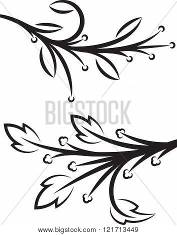 Pair Of Decorative Floral Braches. Vector Illustration.