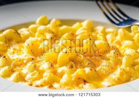 Macaroni and Cheese White Plate