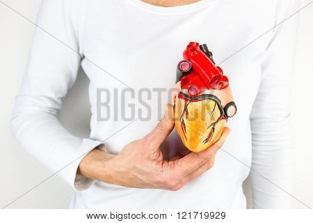 female hand holding human heart model in front of body