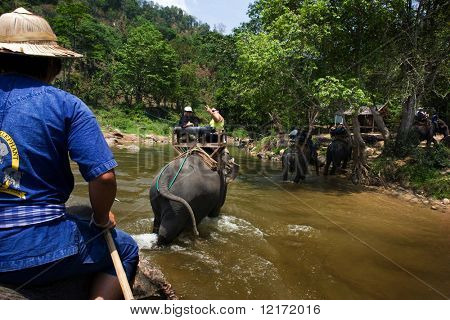 CHIANG MAI, THAILAND - APRIL 23: Tourist riding on elephant backs taken on a ride across a river in north Thailand. April 23, 2009 in Thailand.