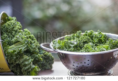 Kale In A Colander Process Window Light Background