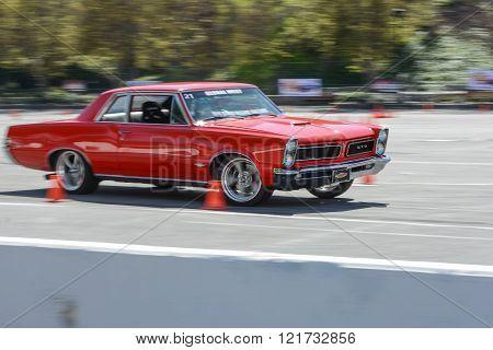 Pontiac Gto In Autocross
