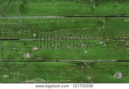 Old Green Wood Grunge Texture. Horizontal