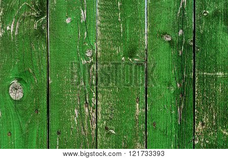 Old Green Wood Grunge Texture. Vertical