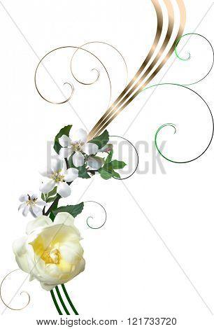 illustration with light rose flower on white background