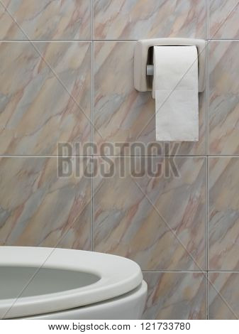 Marbled water closet and toilet paper roll