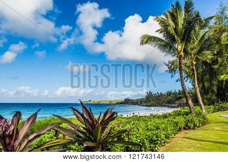 Beautiful beaches and coastline of West Maui Kihei Lahaina Kaanapali Green vegetation blue and green waters warm weather magnificent coast