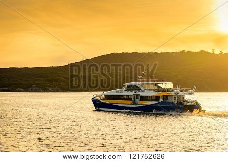 Manly Fast Ferry Boat At Sunset