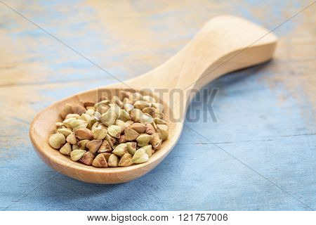 buckwheat grain on a wooden spoon against blue painted grunge wood