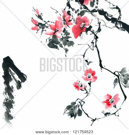 Blossom Sakura. Flowers Illustration..