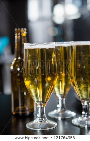 Glasses of beer ready to serve on bar counter in bar