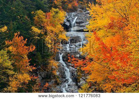 Colorful Autumn creek, White Mountain, New Hampshire.