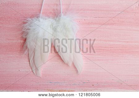 wings on pink