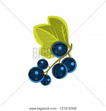 Black Currant  Flat Vector Sticker