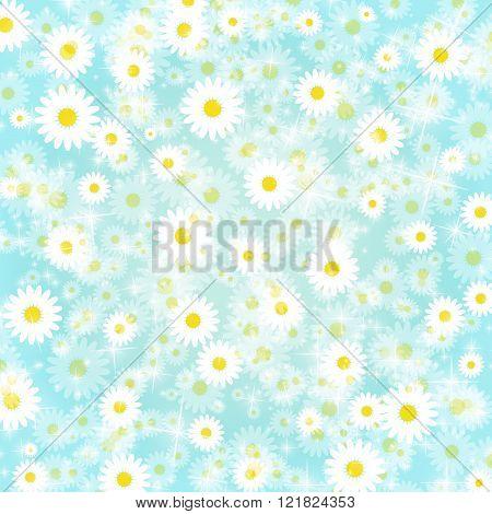 Petal Background Daisy