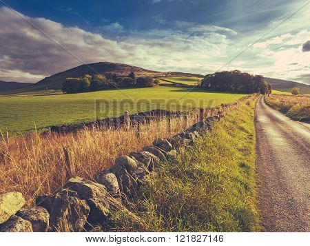 Rural Country Lane