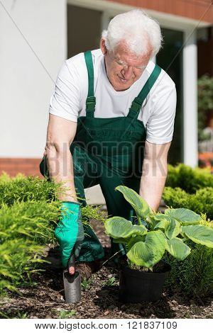 Gardener is digging hole to plant his flower