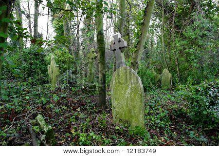 overgrown grave yard, nunhead cemetery