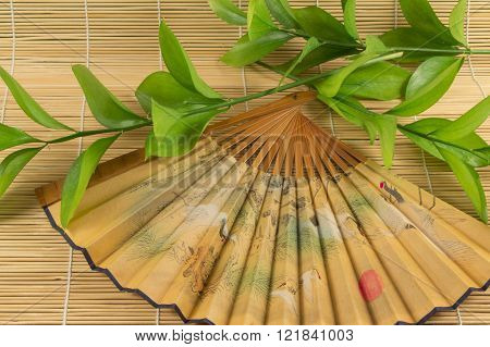 Oriental Outdoor Fan And Green Stems On A Bamboo Mat