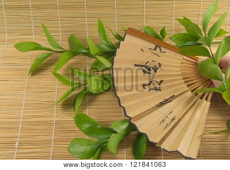 Young Woman Holding A Folding Fan In His Hand.