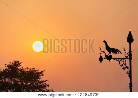 Chicken Lamp Sihlouette On Sunset Twilight View