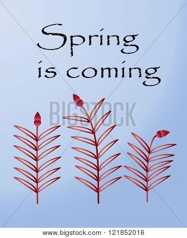 Postcard For Spring Festival