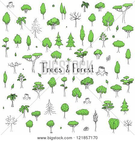 Hand drawn doodle Trees and Forest set Vector illustration tree icons Forest concept elements Tree isolated silhouette symbols collection Nature Forest clipart design Leaf Fir Ever green Branch Stump