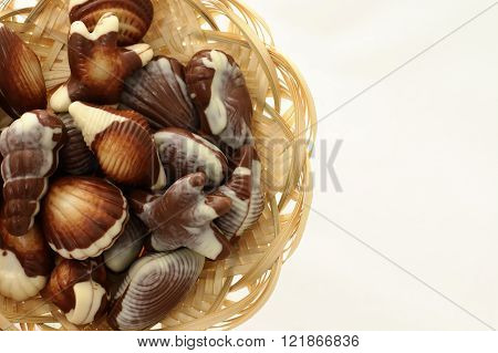 Chocolate Candy Shaped Sea Shells