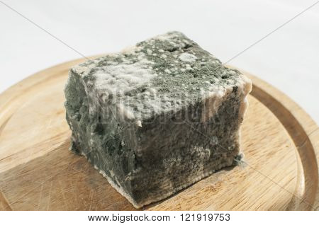 Moldy lump of white cheese on wooden tray on gray background