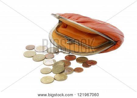 Vintage purse eel skin orange and eurocent