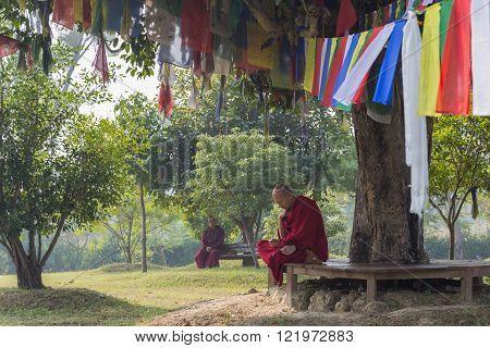 Monks sitting under a tree in Lumbini, Nepal
