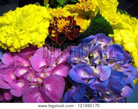 A colorful composition of different wild flowers