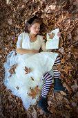 Alice in wonderland fairy tale poster