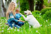 Beautiful woman with little girl and dog outdoors poster