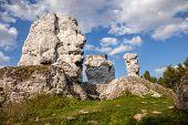 Jurassic limestone rocks - Polish Jura. Polish landscape. poster