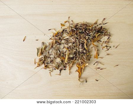 Self harvested seeds in garden from coneflowers