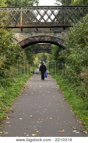 Footpath On Old Railway